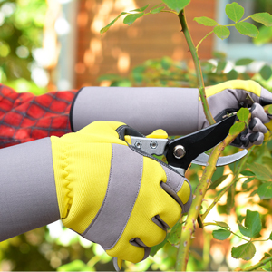 Rose Gloves for Women