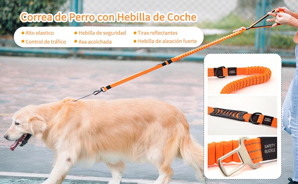 Rosado 145 cm Finnpet Correa Reflectante de absorci/ón de Golpes para Perro con Dos Asas Acolchadas Suaves 2,5 x 93