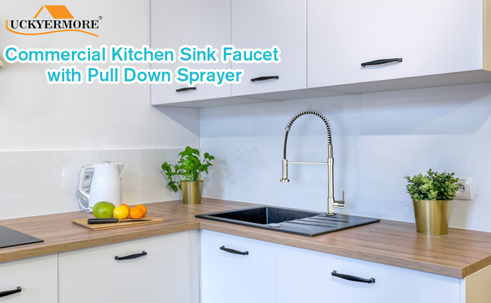 Commercial Kitchen Sink Faucet with Pull Down Sprayer