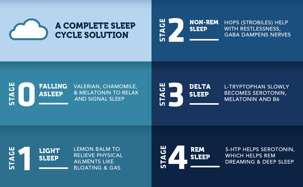 Vitamin Bounty Dream Caps Natural Sleep Supplement