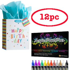 acrylic-pen-paintig-gift-kit-12-pc