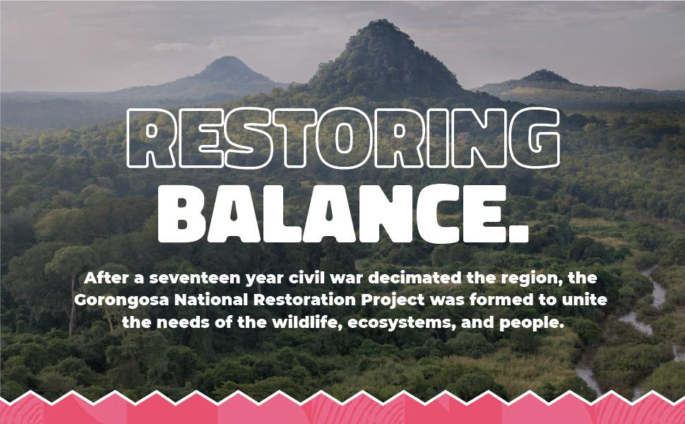 Restoring Balance to Gorongosa Rainforest