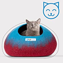 Cat inside cat cave