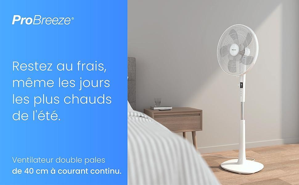 Ventilateur double pales