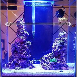 coral reef light aquarium saltwater