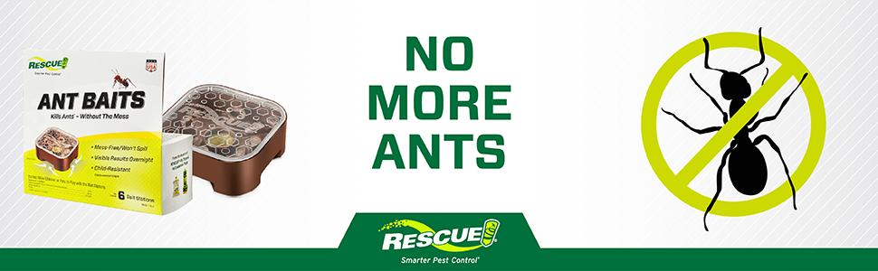 no more ants!