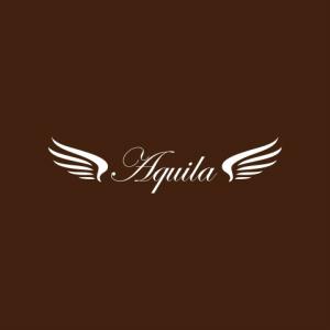 ティラミス専門店Aquilaロゴ