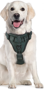 Anti-pulling Dog Harness with Buffering Straps & 4 Adjustable Points