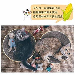 猫 猫壱 バリバリボウル