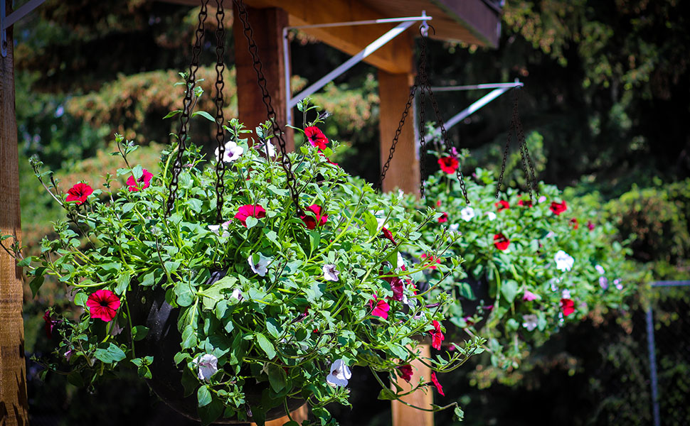 hanging chain bird feeder chain for hanging planters hanging planters chain extension