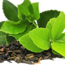 green tea leaves leaf
