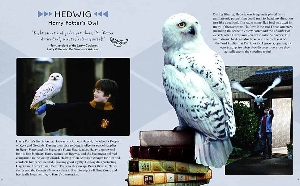 Hedwig the Owl Potter Nursery Potter Playroom Buy 3 get 4th free! 5x7 Watercolor Print Harry Potter Decor