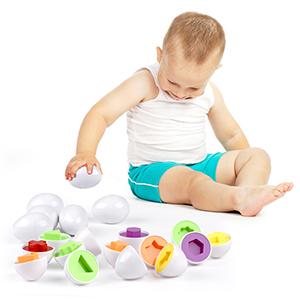 Preschool Learning Educational Sorting