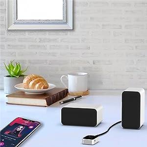 stereo computer speaker