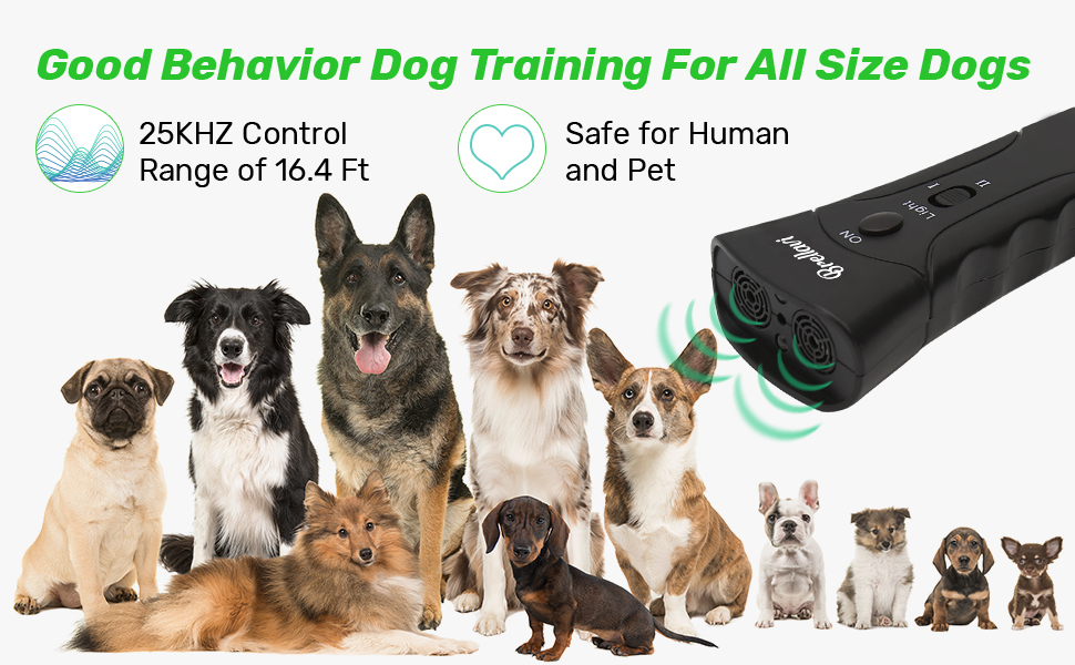 Dog Training Device