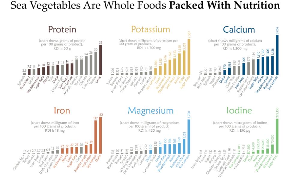 Sea Vegetable Nutrition