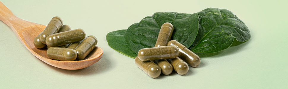 capsule Moringa Bio Oleifera resistenza benefici naturale vegana sport