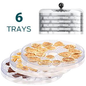 6 trays dehydrator