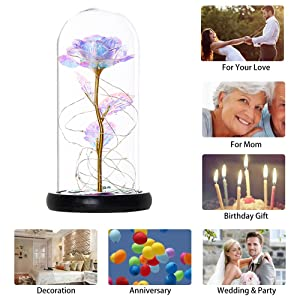 Enchanted Colorful Rose,Galaxy Rose Light Up with Fallen Petals