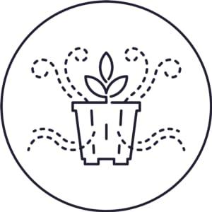 Drainage, orchid pots, orchids