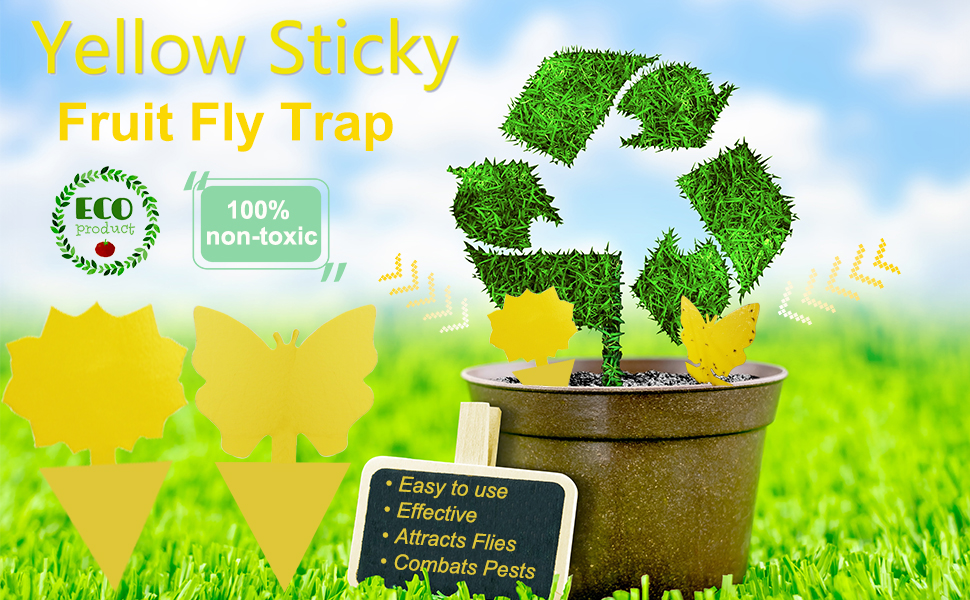 12Pack Yellow Sticky Trap
