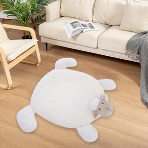 livingroom rug