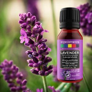 merits of lavender essential oils