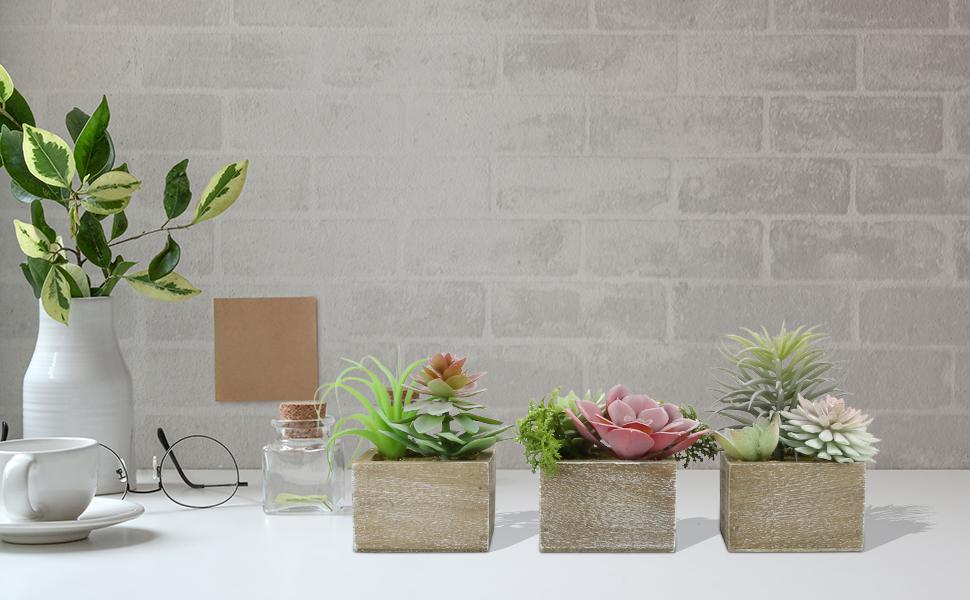 artificial succulents plants