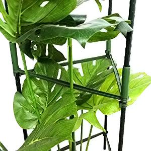 durable tomato cage