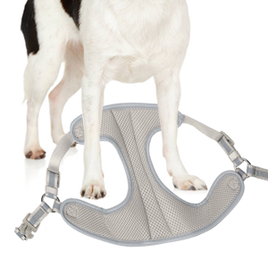 Put the pet's front legs in the step-in harness