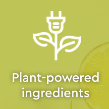 Puracy Natural Multi-Surface Cleaner - Organic Lemongrass 2pk - Plant-powered ingredients