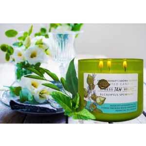 eucalyptus spearmint aromatherapy candles relaxing stress relief homedecor soy wax