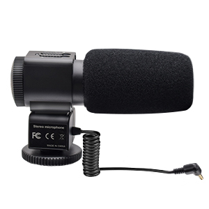 camcorder with microphone