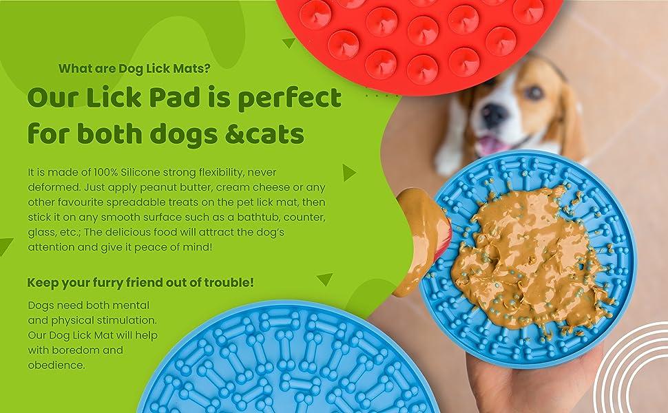 Dog lick mat and dog