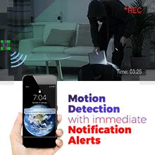 motion alert