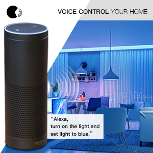 Voice controller