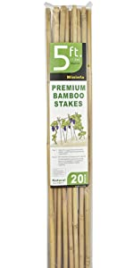 BAMBOO STAKES 5FT