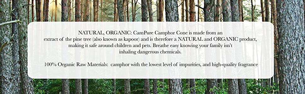 campure pine forest camphor cone air freshener