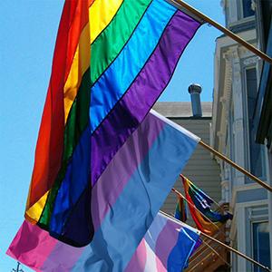TRIXES Bandera Bisexual – Gran Tamaño para Interiores y Exteriores – Celebrar la Diversidad en Bi Pride y Festivales Fiestas de Verano – Rosa Púrpura Azul – 5ft x 3ft: Amazon.es: Jardín