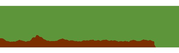 Grounding Brand Logo