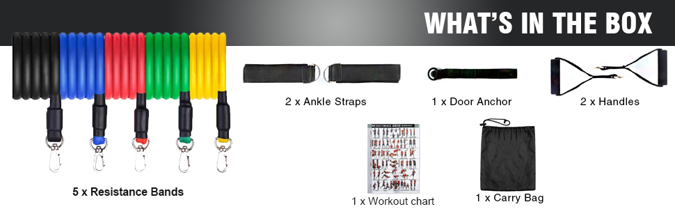 exercise bands for women and men
