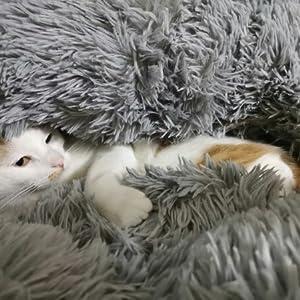 Soft & Cozy Pet Bed