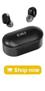 T300 earbuds