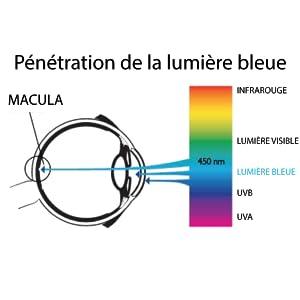 lumière bleue, macula, oeil, yeux, protection