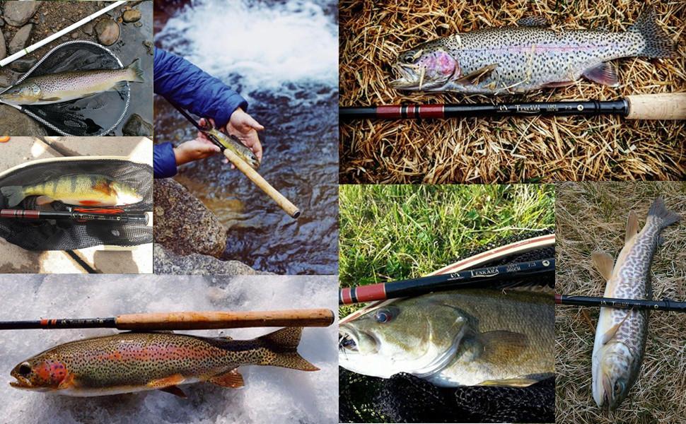 MaximumCatch® Fly Rod Hook Keeper 6Sets 18Pcs Easy Hook Keeper For Tenkara Fish