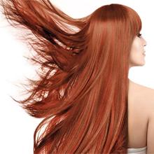 eucalyptus shampoo and conditioner  moisture care  invigorating shampoo  hydrating shampoo