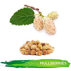 golden berries superfood snacks anitoxidants low fat fiber protien immune support health organic