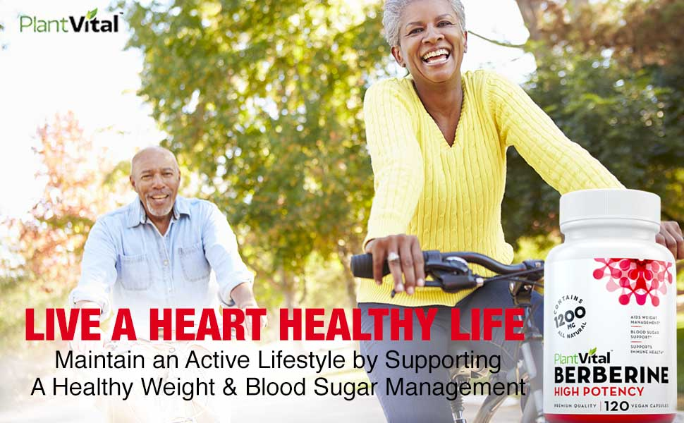 Berberine Weight Loss Boosts Immune System Blood Sugar Stabilizer Glucose Metabolism Cardiovascular