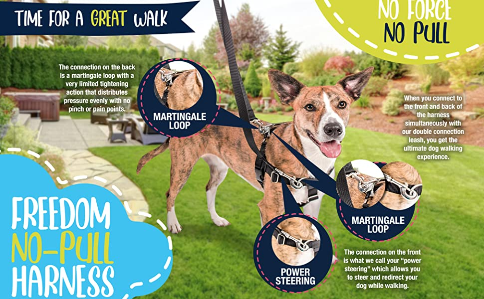 2 hounds design no pull dog harness martingale collar easy walks small medium large dogs