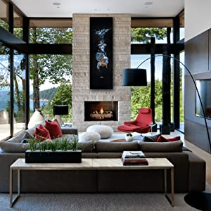 diving for silver living room staging